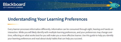 Understanding Your Learning Preferences