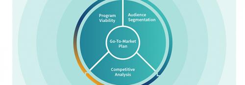 Chart showing the lifecycle of a Go-to-Market plan including Program Viability, Audience Segmentation, and Competitive Analysis